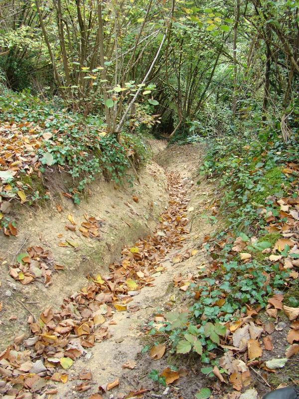 Glissière qui permettait aux wagonnets remplis de pierres de descendre, et remonter, vides.