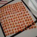 Délire de carottes