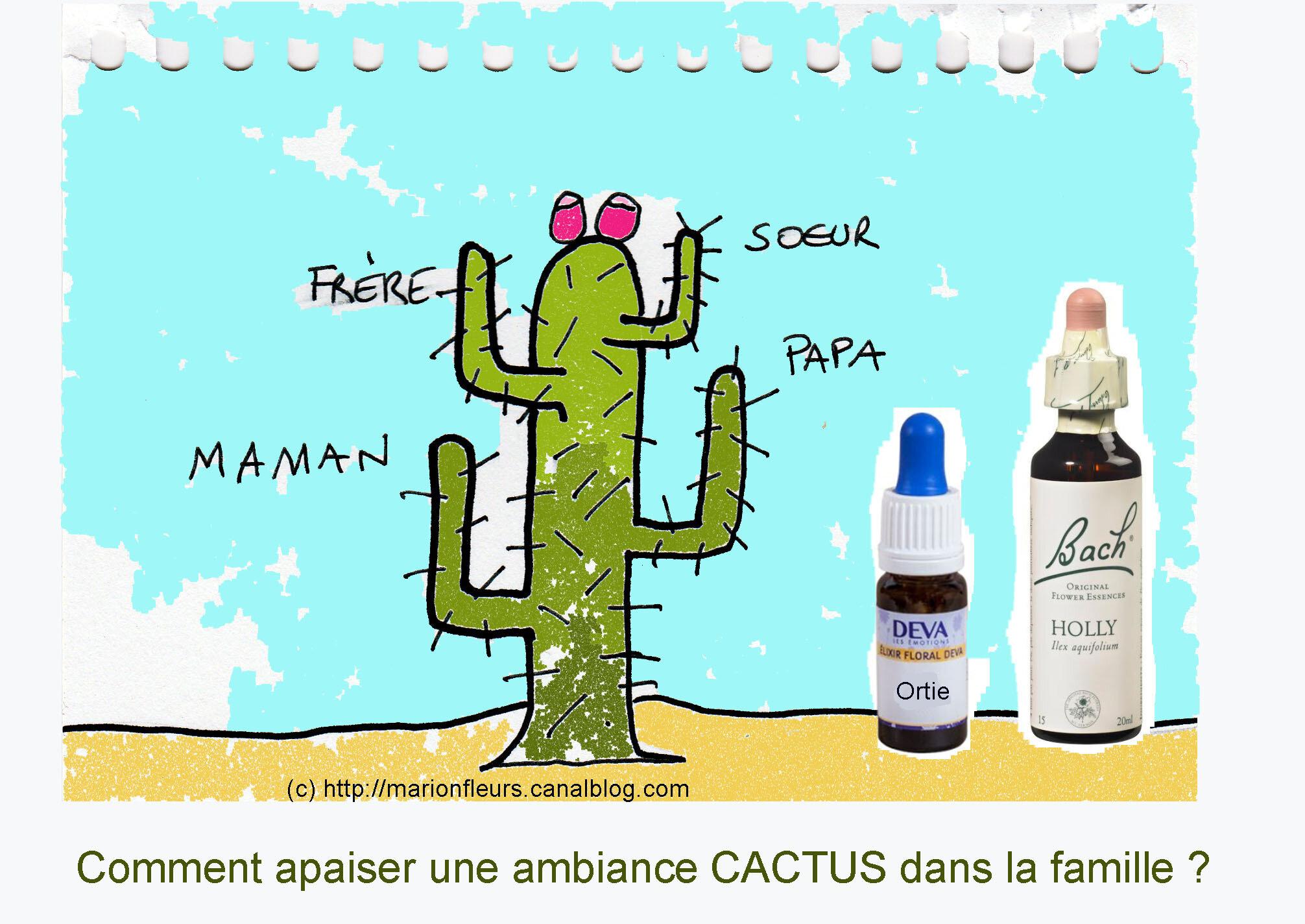 """Qui s'y frotte s'y pique / A l'approche de Noël se manifestent parfois des humeurs """"cactus"""" dans la famille / EF : Holly, Ortie"""
