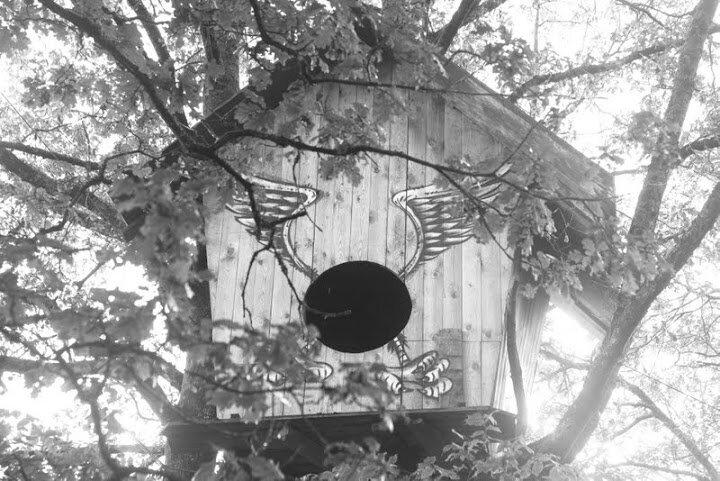 la gare birds nest
