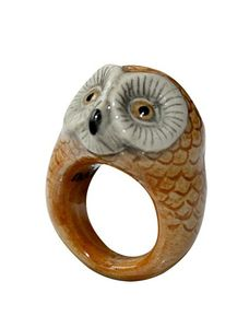 BS02_Barn_Owl_Ring[1]
