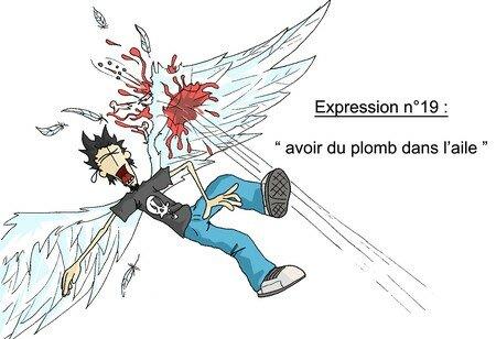 expression_n_19_bis