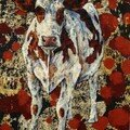 Holstein 112 - Technique mixte 80X60 cm - Romual DELAIRE