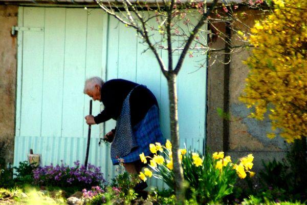 Femme âgée dans jardin 2011 (1)