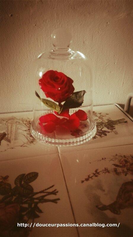 la rose3