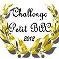 Challenge petit bac 2012 : 2ème recap'