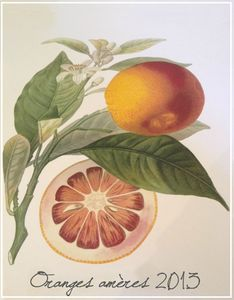 Oranges amres (2)