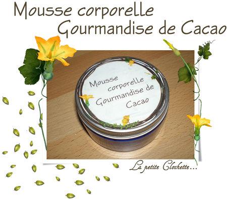 Mousse_gourmandise_de_cacao