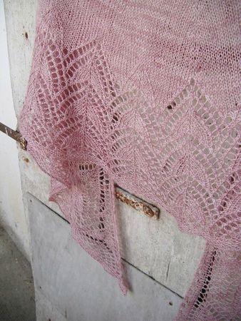 Pink bakau 038