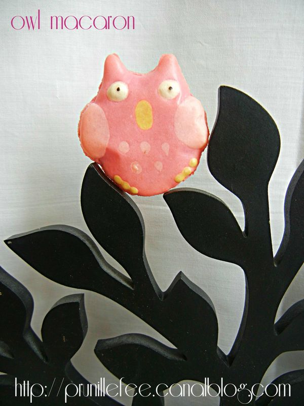 owl macaron by nadege creaprovence