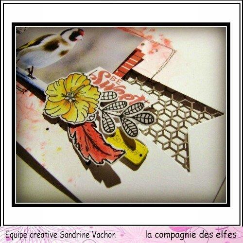 fév page dt LCDE Sandrine VACHON (3)