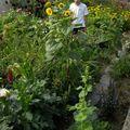 2009 08 18 Cyril dans son jardin