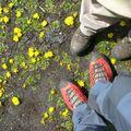 Nos pieds au col de Pucaraju, Trek du tour de l'Alpamayo, Pérou