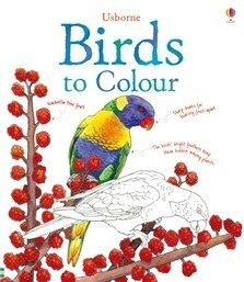 birds-to-colour