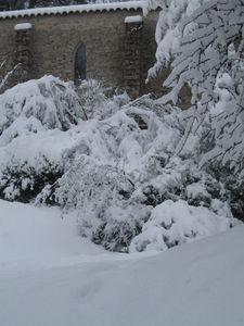 neige_7janvier_015
