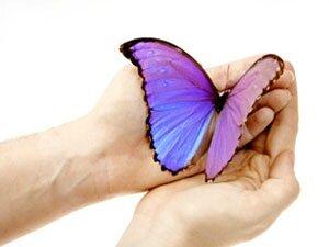 papillon-totem-300