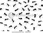 stock-vector-illustration-with-ant-silhouettes-isolated-on-white-background-95525917