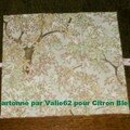 valie62 pourcitron bleu3
