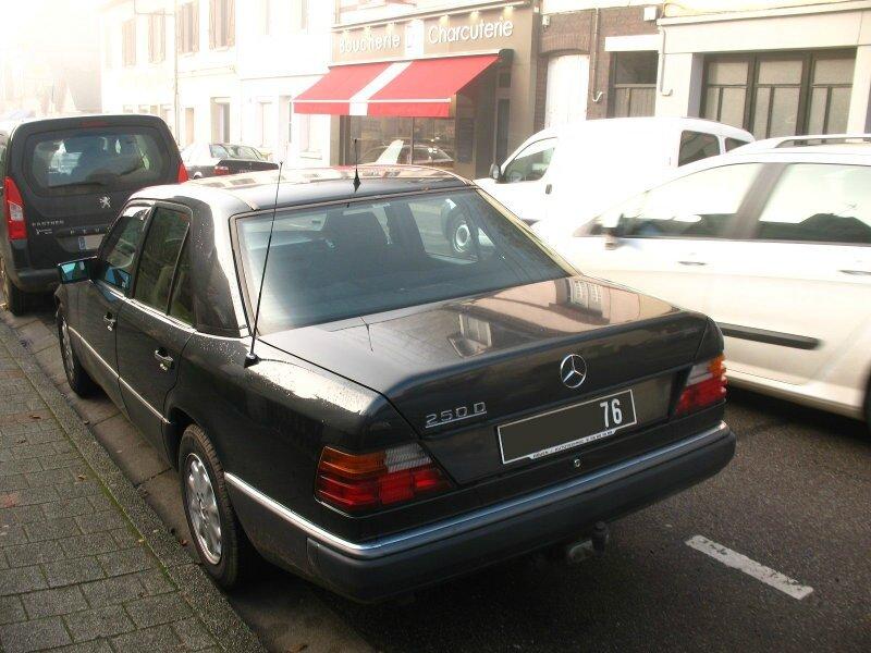Mercedes250DW124ar1