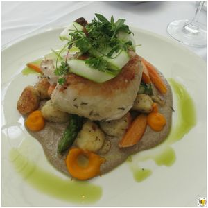 Shelton Farms Chicken, ricotta dumplings, globe carrots, asparagus, chive oil, wild mushroom cream