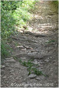 Chemins 8