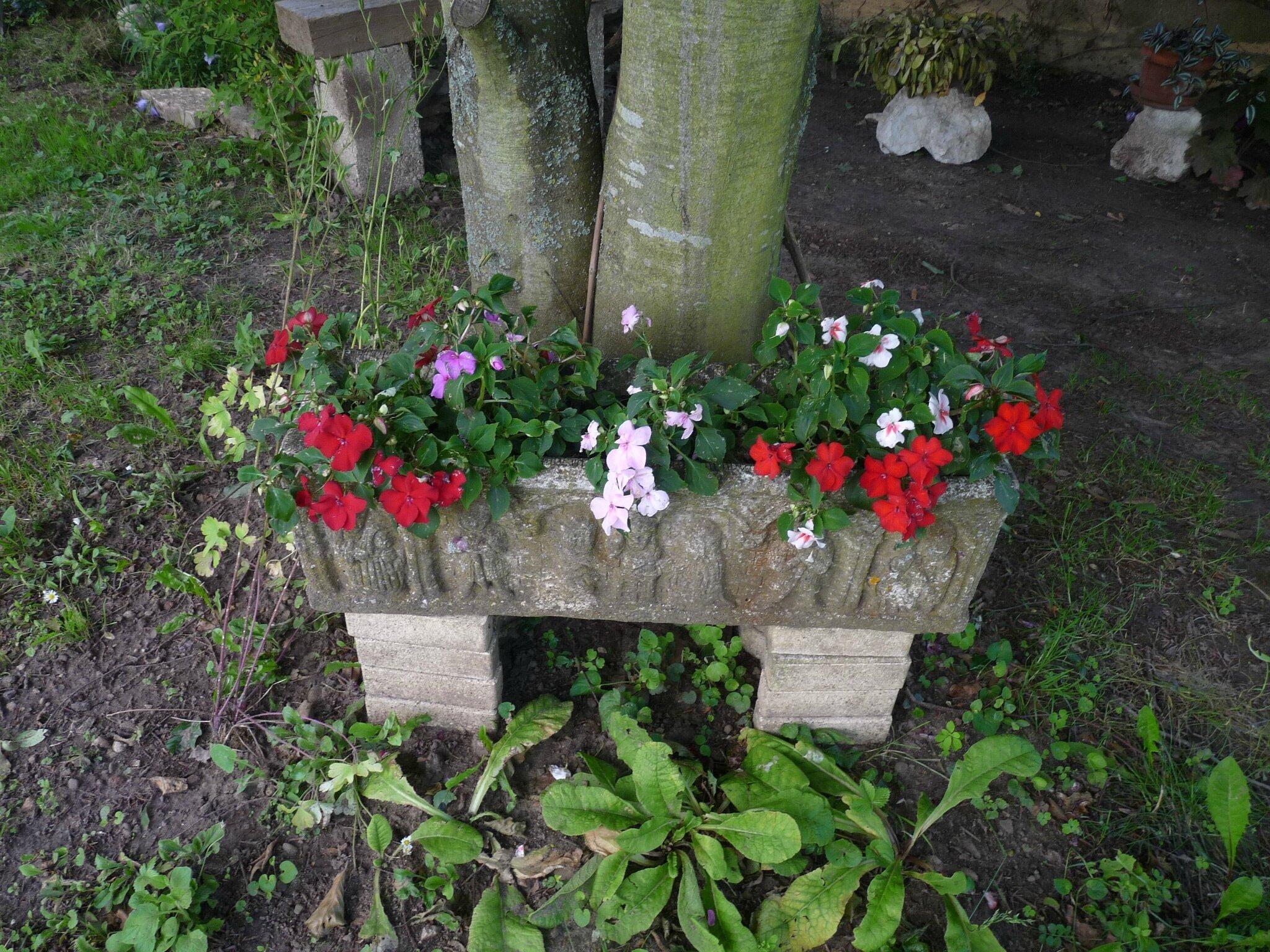 184 au jardin cheznadette - Petit jardin que mettre mulhouse ...