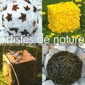 Artistes de nature: pratiquer le land art au fil des saisons
