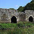 Champtoceaux - Ruines Vieux Pont-01