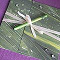 Faire part mariage theme zen bambou exotique impression feuille sous la pluie