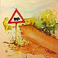 traversée Rhinos