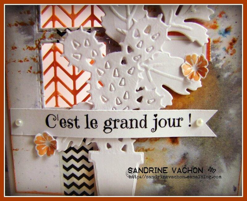 Sandrine VACHON 5 juin (3)