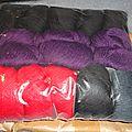 Toutes en laine