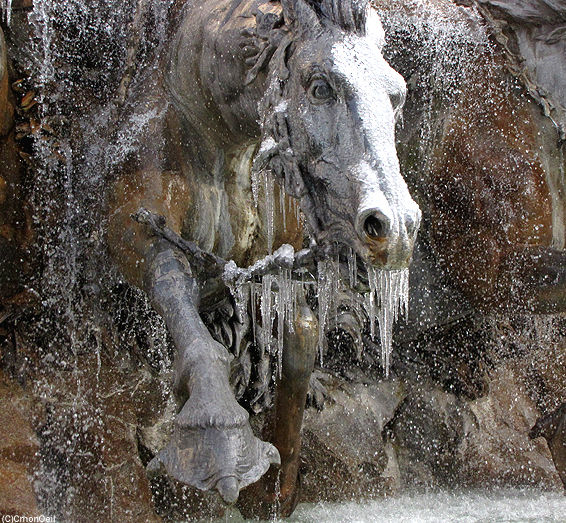 cheval2glace3