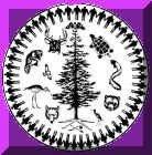logoMohawk