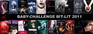Challenge_Bit_Lit