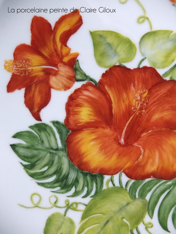 hibiscus-a3