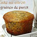Muffins ultra moelleux au citron vert et graines de pavot
