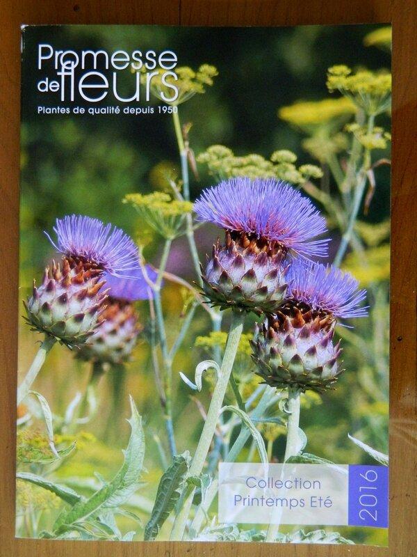 Promesse de fleurs le jardin par passion for Catalogue fleurs par correspondance