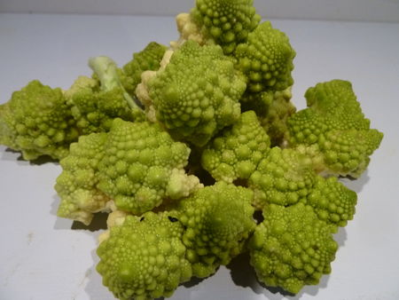 6_CHOUX_ROMANESCO__14_