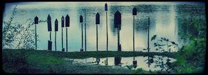 étangs d'art 1