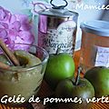 Gele de pomme verte