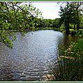 Lac Mimizan 0505159