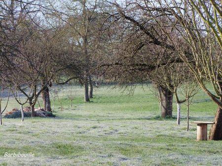 jardin20_Mars11