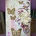 Boîte à papillons