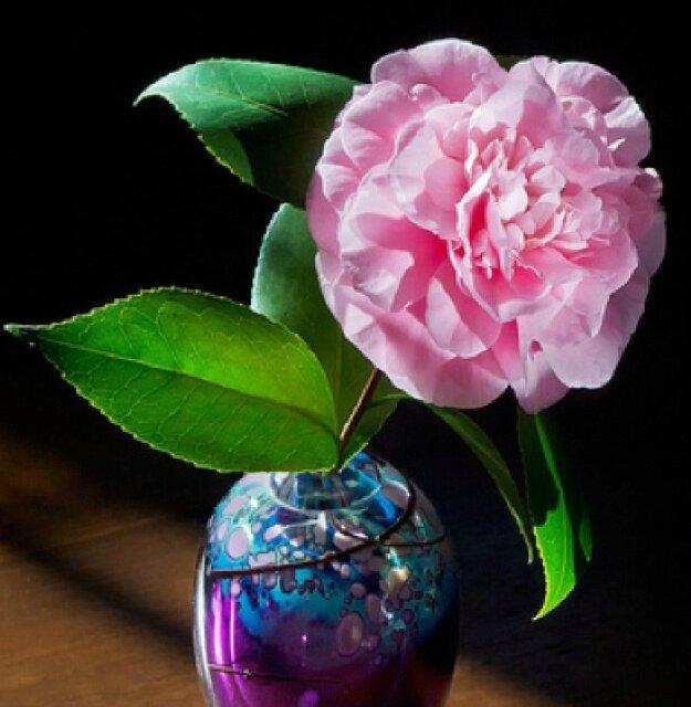 Dans vase de verre soufflé