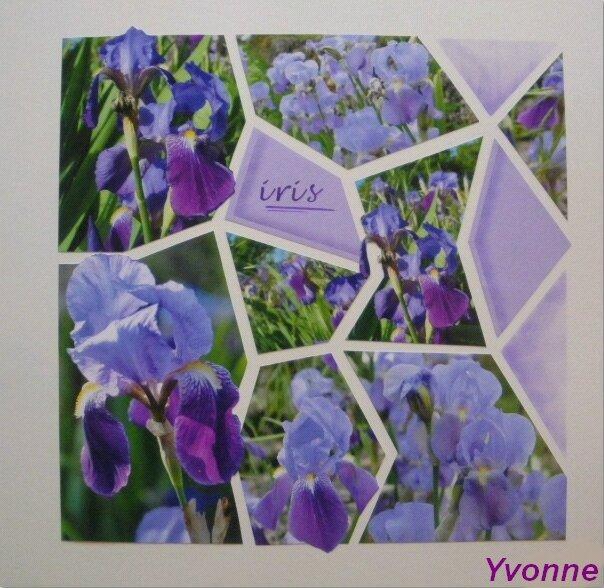 Yvonne 2