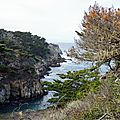 Monterey et point lobos state reserve