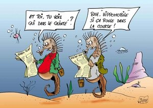 HIPPOJOURNAUX-COUL