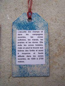 Verso A