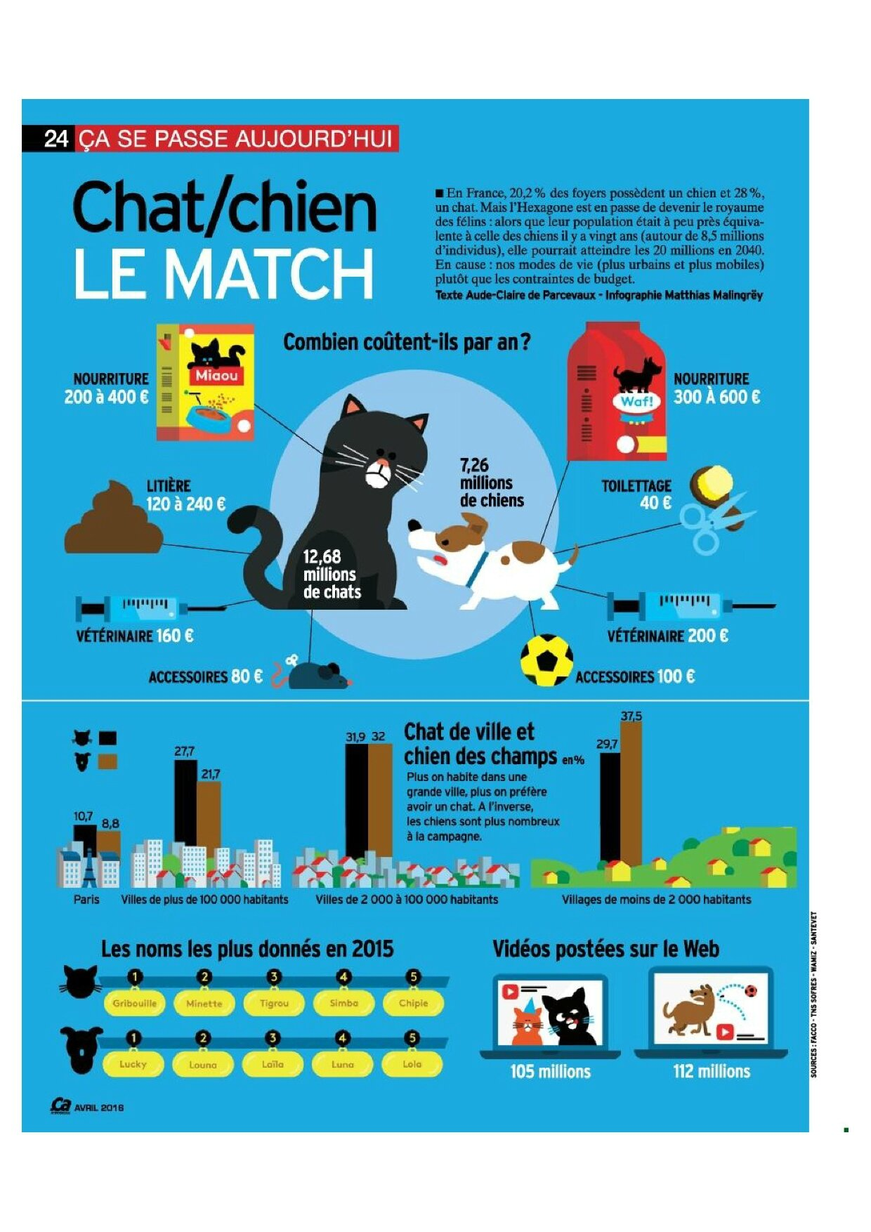 chat vs chien france